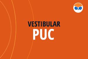 Vestibular PUC